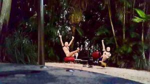 Dummies on Seesaw